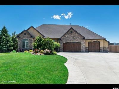 Lehi Single Family Home For Sale: 2683 N 750 E