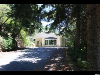 Layton Single Family Home For Sale: 3193 E Fernwood Dr N