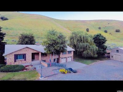 Preston Single Family Home For Sale: 1147 Giraffe