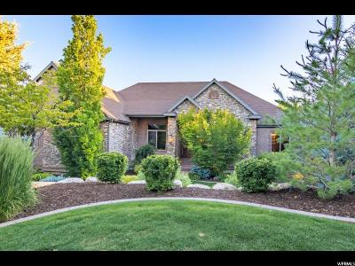 Alpine Single Family Home For Sale: 189 S Sequoia Cir