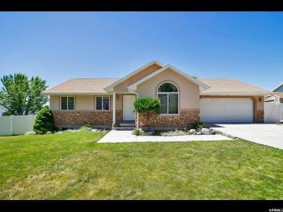 Springville Single Family Home For Sale: 991 N 600 E