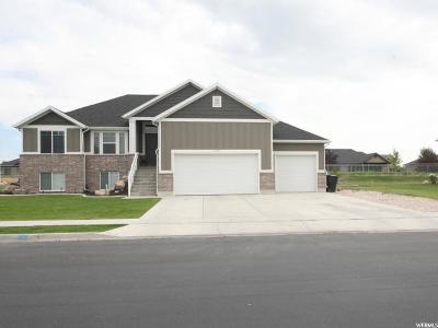 Farr West Single Family Home For Sale: 2735 W 2225 N