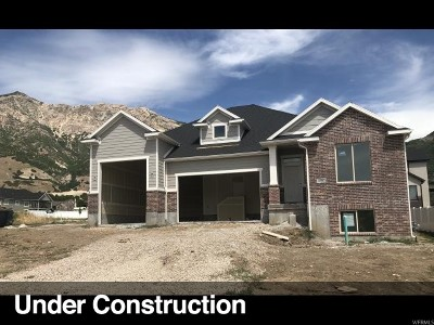 North Ogden Single Family Home For Sale: 2796 N 1125 E
