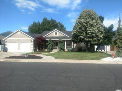 Mapleton Single Family Home For Sale: 932 N 1140 W