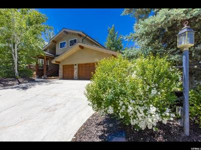 Park City Single Family Home For Sale: 8941 Lariat Rd
