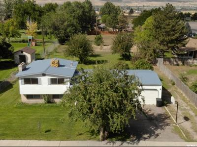 Payson Single Family Home For Sale: 724 S 700 W