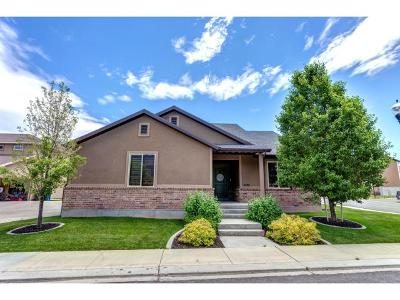 Santaquin Single Family Home For Sale: 1025 N Apple Seed Ln