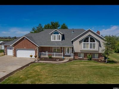 West Point Single Family Home For Sale: 54 S 4500 St W