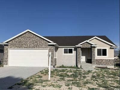 Grantsville UT Single Family Home For Sale: $316,600