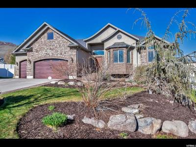 Herriman Single Family Home Under Contract: 14296 S Maple Run Cir