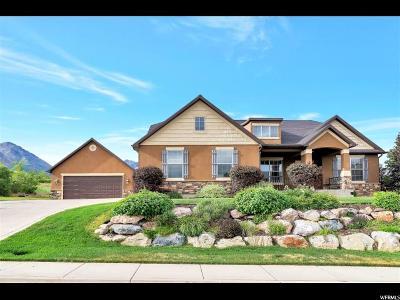 Santaquin Single Family Home Under Contract: 708 E 650 S