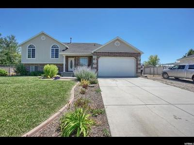 Farr West Single Family Home Under Contract: 1479 W 1300 N