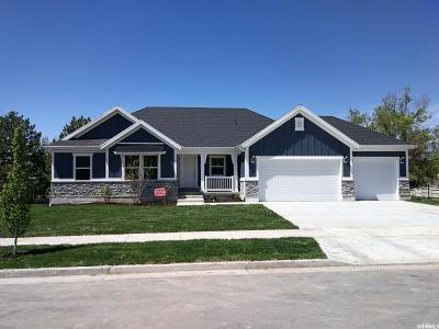 Layton Single Family Home For Sale: 1395 N 1525 E