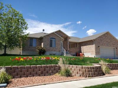 Saratoga Springs Single Family Home Under Contract: 669 N Badger Ln