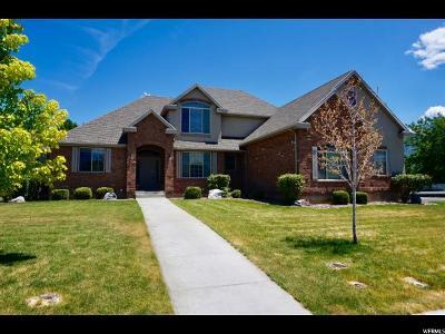 Spanish Fork Single Family Home For Sale: 1227 S 1180 E