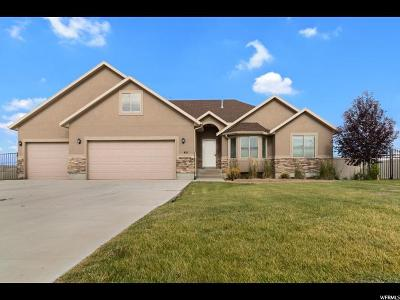 Grantsville UT Single Family Home For Sale: $425,000
