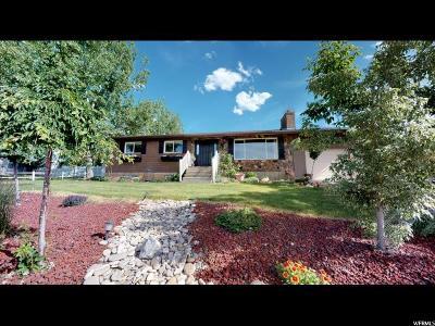 Elk Ridge Single Family Home Under Contract: 382 E Magellan Ln