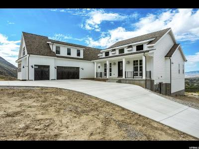 Alpine Single Family Home For Sale: 13189 N Oak Hill Dr E #3