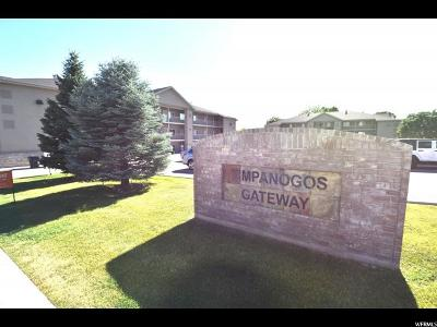 Provo Condo For Sale: 1963 N Canyon Rd Unit 107