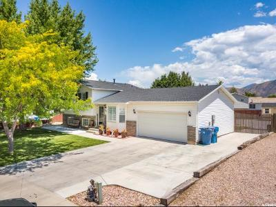 Santaquin Single Family Home Under Contract: 596 N 280 W
