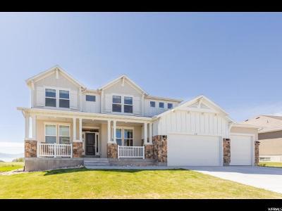 Saratoga Springs Single Family Home For Sale: 247 E Sandhill Dr