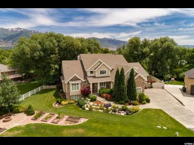Kaysville Single Family Home For Sale: 1115 Kings Ct