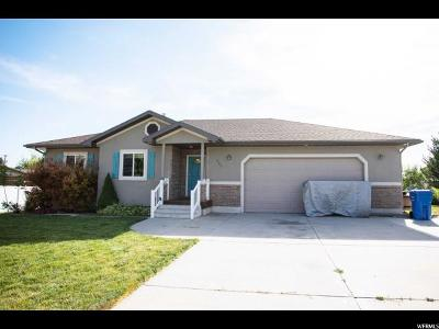 Smithfield Single Family Home For Sale: 262 E 360 S