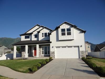 Spanish Fork Single Family Home For Sale: 2402 E Driftwood Dr N