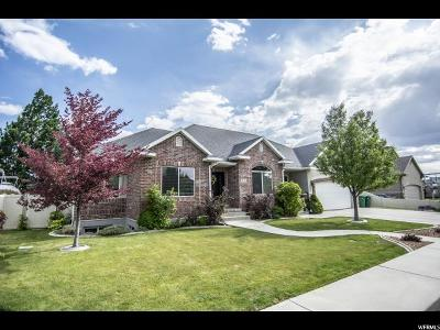 Orem Single Family Home For Sale: 864 E 680 N