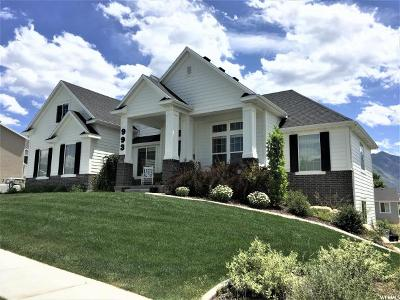 Spanish Fork Single Family Home Under Contract: 993 W 1300 S