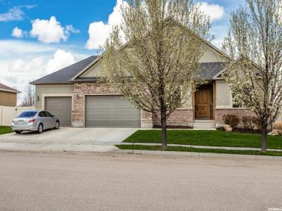 Riverton Single Family Home For Sale: 3378 W Chatel Dr