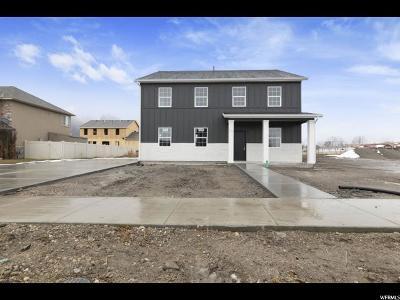 Springville Single Family Home For Sale: 138 N 800 W #8