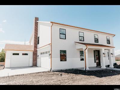 Springville Single Family Home For Sale: 11 N 800 W #17