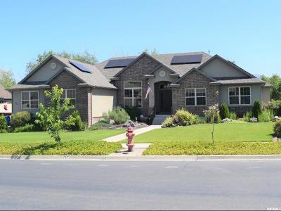 Spanish Fork Single Family Home For Sale: 797 S River Ridge Ln