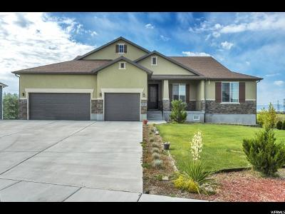 Kaysville Single Family Home For Sale: 643 W Mare Dr