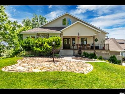 Riverton Single Family Home For Sale: 11939 S Lampton View Dr