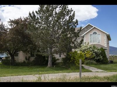 Spanish Fork Single Family Home For Sale: 324 E 8800 S