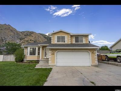 Springville Single Family Home For Sale: 534 N 400 E