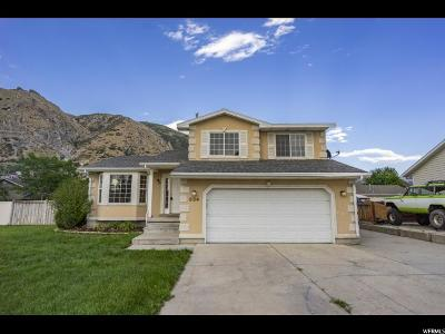 Springville Single Family Home Under Contract: 534 N 400 E