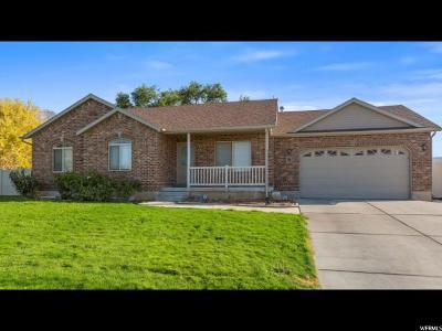 Santaquin Single Family Home For Sale: 58 E 500 N