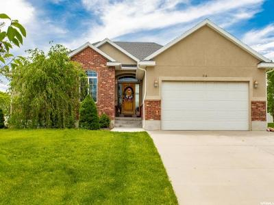 Grantsville UT Single Family Home For Sale: $400,000