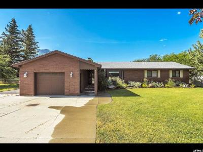 Mapleton Single Family Home For Sale: 890 E 1600 N