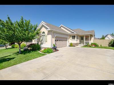 Lehi Single Family Home Backup: 4383 N Chestnut Oak Drive Res E #44