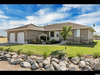 Ogden Single Family Home Under Contract: 780 S 3600 W