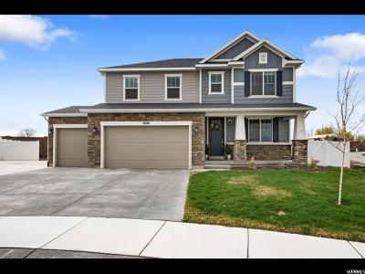 Riverton Single Family Home For Sale: 3890 W Young Lucerne Cir