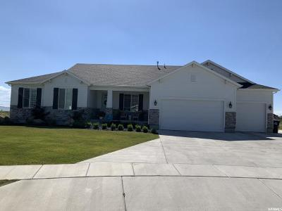 Kaysville Single Family Home For Sale: 1238 S Sir Barton Dr W