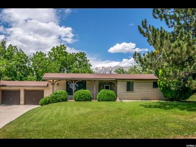 Provo Single Family Home For Sale: 393 E 4450 N