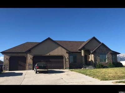 Grantsville UT Single Family Home For Sale: $299,000