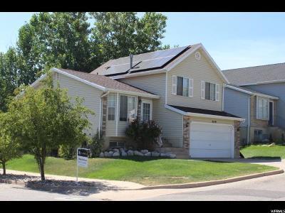 Layton Single Family Home For Sale: 3129 N 1175 E