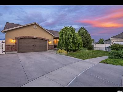 West Jordan Single Family Home For Sale: 5129 W Blue Holly Ct